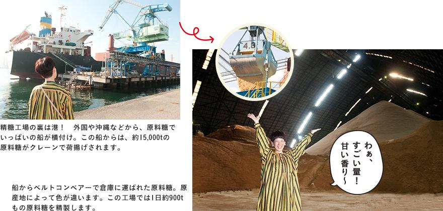 精糖工場の裏は港! 外国や沖縄などから、原料糖でいっぱいの船が横付け。この船からは、約15,000tの原料糖がクレーンで荷揚げされます。船からベルトコンベアーで倉庫に運ばれた原料糖。原産地によって色が違います。この工場では1日約900tもの原料糖を精製します。