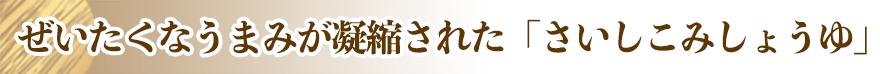 title_saishikomi