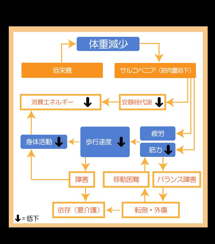f_cycle_1