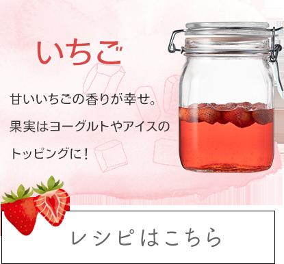 いちご:甘いい香りがしあわせ。果実はトッピングにぴったり