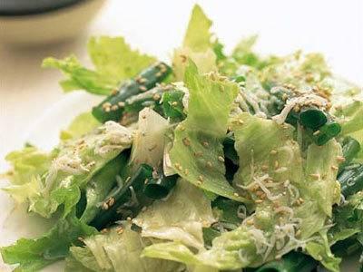 感嘆サラダ レシピ グッチ 裕三さん|【みんなのきょうの料理】おいしいレシピや献立を探そう